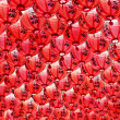 Red Lanterns — Stock Photo #6881107