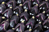 Egg plants — Stock Photo