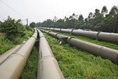 Industrial pipeline — Stock Photo