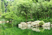 Pond in park — Stock Photo