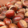 Chestnut — Stock Photo #7713368