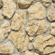 Wall from a shell rock — Stock Photo