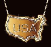 USA Chain Bling — Stock Vector