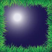 Nattscen med gräs gränsen — Stockvektor