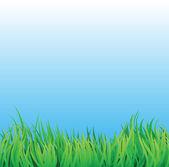 Gräsplan med blå himmel — Stockvektor