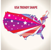 USA trendy shape — Stock Vector