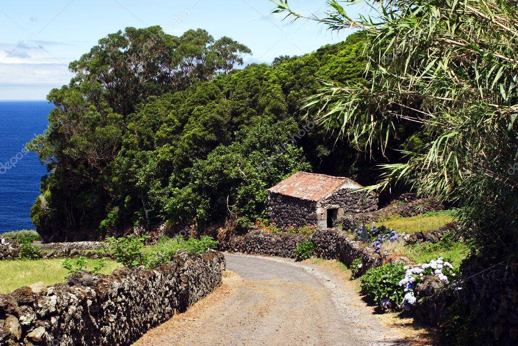 Swell Small Stone House Fotografias De Stock C Mirisek 7493737 Largest Home Design Picture Inspirations Pitcheantrous