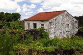 扔石头的老房子 — 图库照片