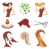 Hair_cosmetic_icon_set — Stock Vector