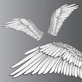 White Wings — Stock Vector