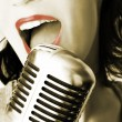 Retro Singer — Stock Photo #6962291