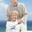 Royalty-Free Stock Photo: Smiling elderly couple enjoying themselves together
