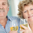 Royalty-Free Stock Photo: Portrait of a retired old couple holding wine glasses