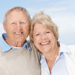 Happy old couple smiling together against the sky - Stock Photo