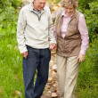 Royalty-Free Stock Photo: Happy mature couple walking together in countryside