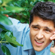 Businessman hiding in the bushes - 
