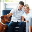 Happy young couple sitting with dog at home - Stockfoto