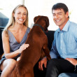 Royalty-Free Stock Photo: Happy young couple sitting with their pet dog at home