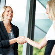 Two happy business women shaking hands with each other - Stock Photo