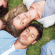 Group of lying on grass taking a nap - Stock Photo