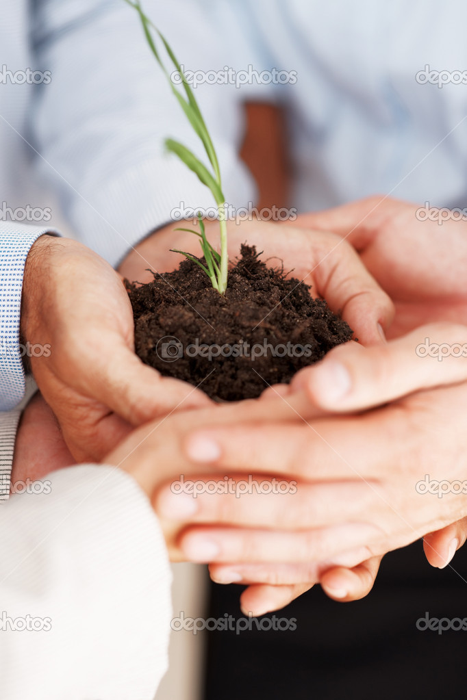 Conceptual image of a business holding a new plant — Stock Photo #7788048