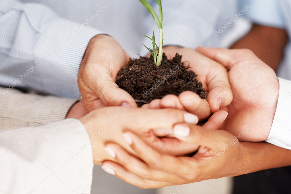 Cropped image of businesspeople together holding a plant on hand  Stock Photo #7788049