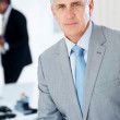 Royalty-Free Stock Photo: Portrait of a successful middle aged businessman