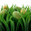 Colorful easter eggs in the grass - Stockfoto