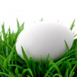 Royalty-Free Stock Photo: One white egg on green grass bush