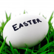 Easter egg lying on green grass - Stockfoto