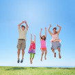 Royalty-Free Stock Photo: Family jumping on grass