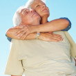 Royalty-Free Stock Photo: Senior couple enjoying the tranquil weather