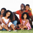 Smiling African American family in park - Stock Photo