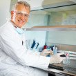 Royalty-Free Stock Photo: Researcher carrying out experiments in a lab