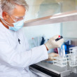 Royalty-Free Stock Photo: Scientist carrying out experiments in sterile environment