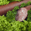 Sausage — Stock Photo #7650995