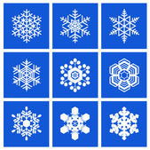 A set of snowflakes. — Stockvektor