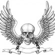 Skull and wings heraldry — Imagen vectorial