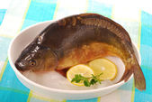 Raw carp ready to prepare — Stock Photo