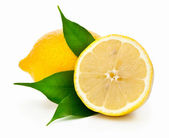 Citroner — Stockfoto