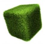 Grass Cube — Stock Photo