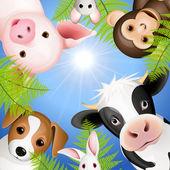 Curious animals — Stock Vector