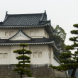Stock Photo: Nijo Castle