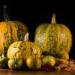 Pumpkins — Stockfoto #6873224