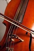 Hraje na violoncello — Stock fotografie