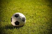 Fotbalový míč na trávě — Stock fotografie