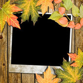 Autumn frame — Photo