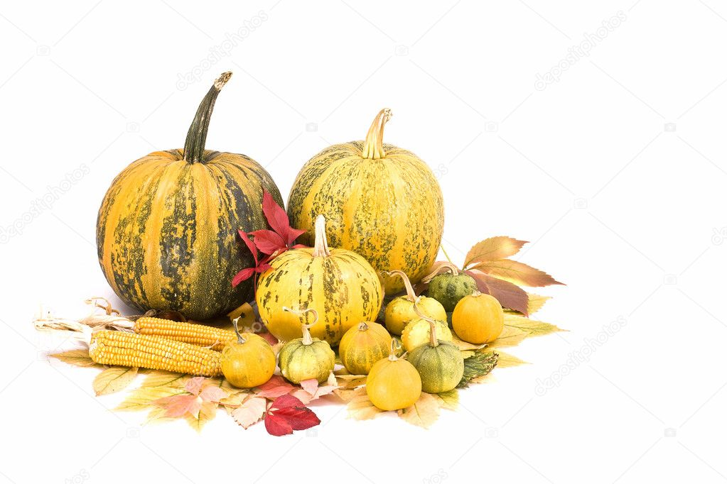 Fall leaves, corn and pumpkins isolated on white, autumn background  — Stock Photo #6873194
