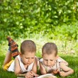 Boys reads — Stock Photo #7516303