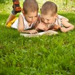 Stock Photo: Boys reads